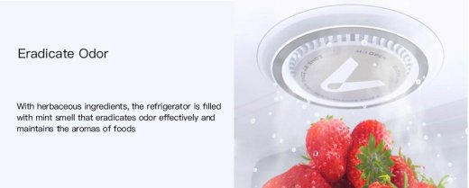 VIOMI Herbaceous Refrigerator Air Clean Facility Filter